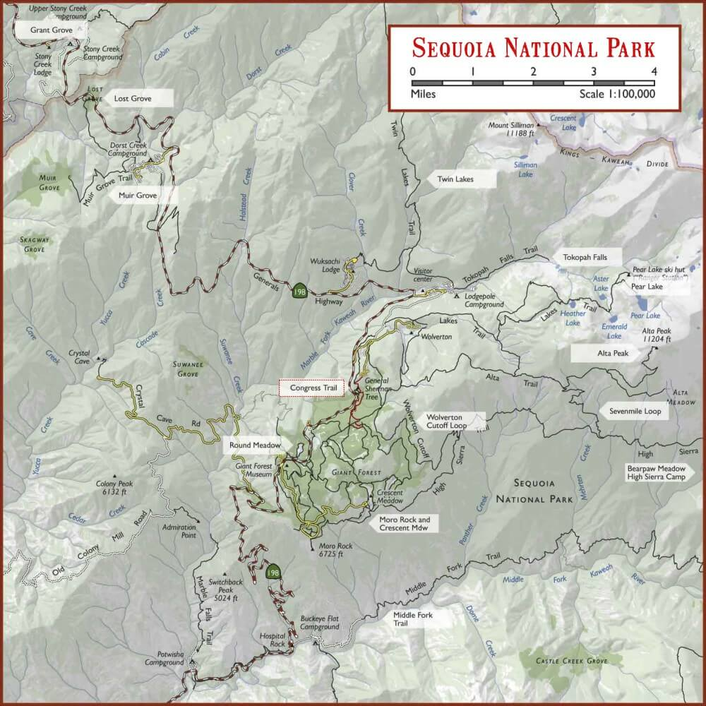 The Complete Guide to Hiking the Congress Trail, Sequoia National ...