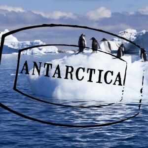 Antarctica 300