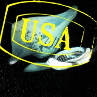 USA Night dive with manta rays in Hawaii