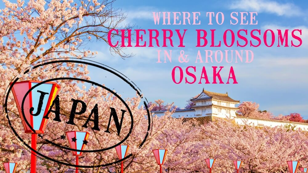 wHERE TO SEE CHERRY BLOSSOMS IN AND AROUND oSAKA