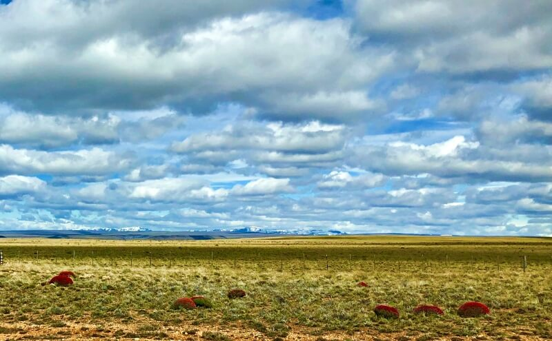 patagonia scenes while driving