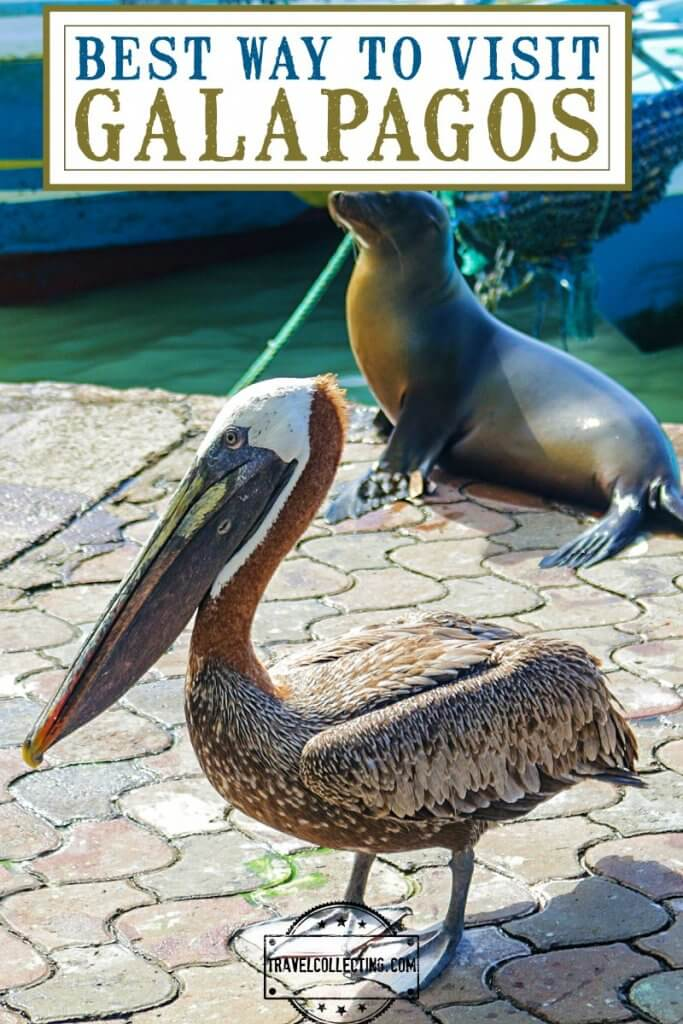Best Way to See Galapagos