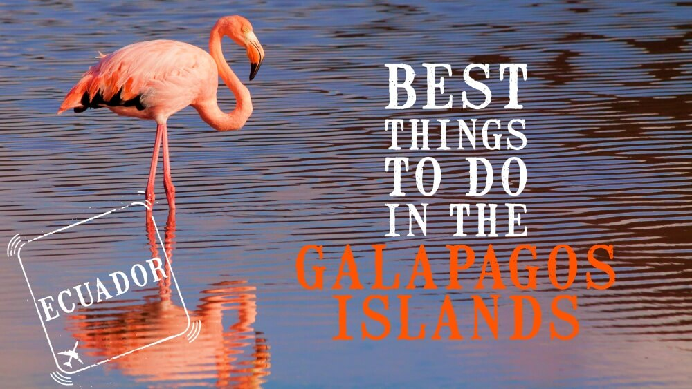Best things to do in the Galapagos Islands