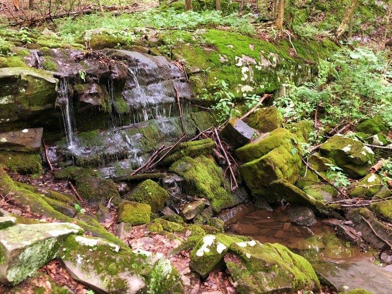 upper small waterfall Shaupeneak Ridge Trail