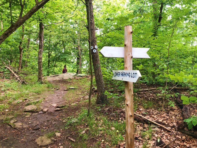end of white trail where it joins red trail Shaupeneak Ridg
