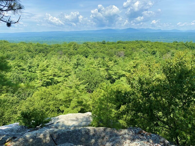 view of Catskills from Northeast Trail