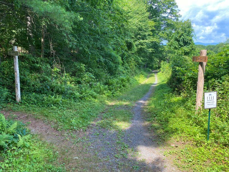 blue trail goes to left Farm Road straight on is most direct route back to spring farm trailhead