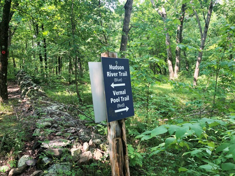 Black Creek Preserve trail marker return trip where red and blue join after shared trail