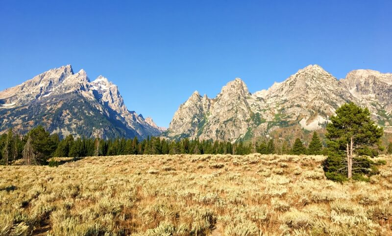 View of Grand Tetons from Cascade Canyon Turnout on the Grand Tetons Scenic Loop drive